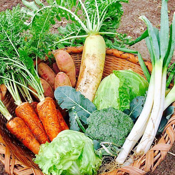 くつろぎ工房による季節の野菜セット